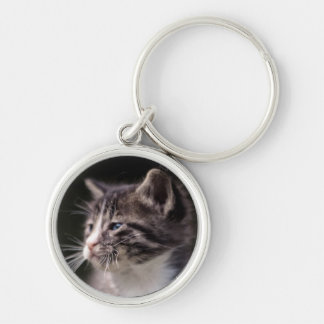 Kitten standing and squinting key ring