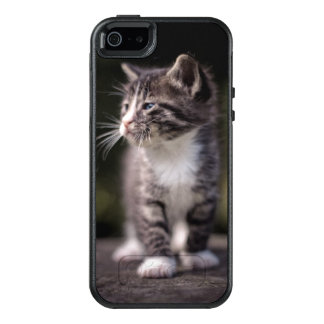 Kitten standing and squinting OtterBox iPhone 5/5s/SE case