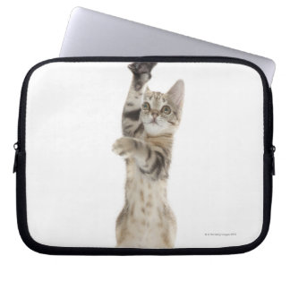 Kitten standing on back paws laptop sleeve