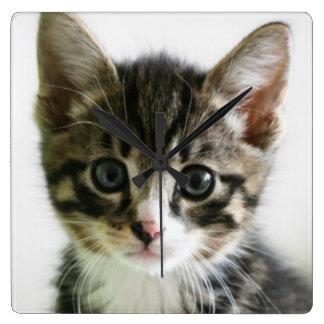 Kitten Stare Clock