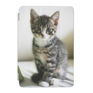 Kitten Stare iPad Mini Cover