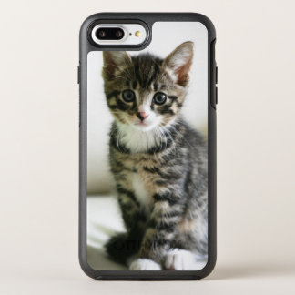 Kitten Stare OtterBox Symmetry iPhone 8 Plus/7 Plus Case