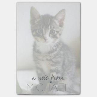 Kitten Stare Post-it Notes