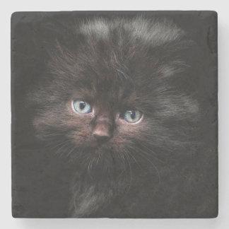 Kitten Stone Coaster