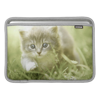 Kitten taking steps in the grass MacBook sleeve