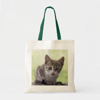 Kitten Tote Bag