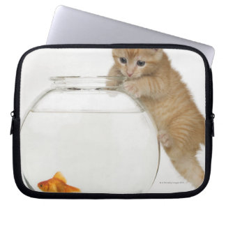 Kitten trying to get at a goldfish laptop sleeve
