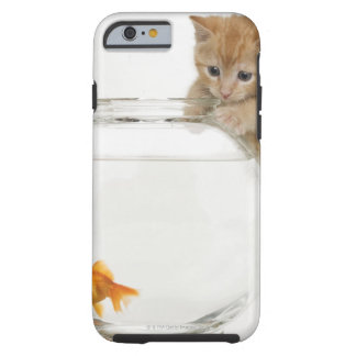 Kitten trying to get at a goldfish tough iPhone 6 case