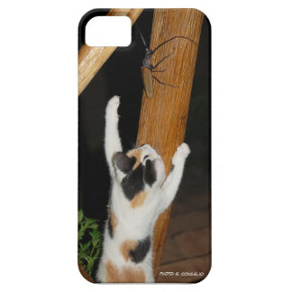 Kitten vs Titanus Giganteus Barely There iPhone 5 Case