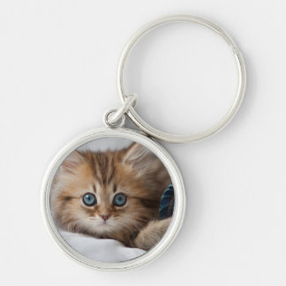 Kitten With Blue Eyes Playing Silver-Colored Round Key Ring