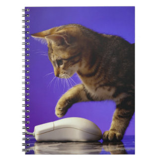 Kitten with computer mouse spiral note book