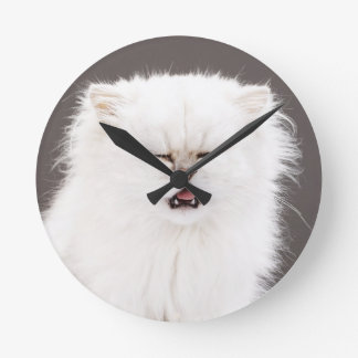 Kitten with Eyes Closed Round Clock