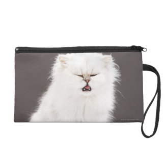 Kitten with Eyes Closed Wristlets