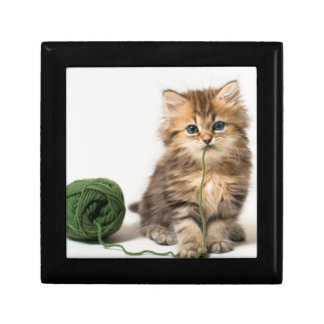 Kitten With Green Yarn Gift Box