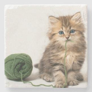 Kitten With Green Yarn Stone Coaster