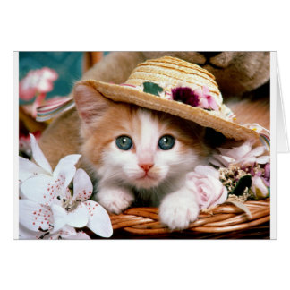 Kitten with straw hat. card