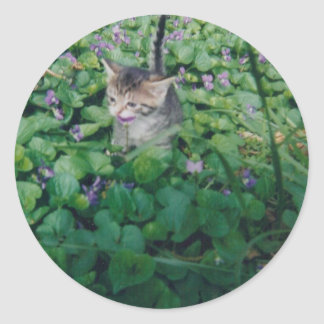 KITTEN WITH VIOLET SMILE CLASSIC ROUND STICKER