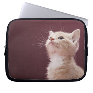 Kitten with Whiskers Laptop Sleeve