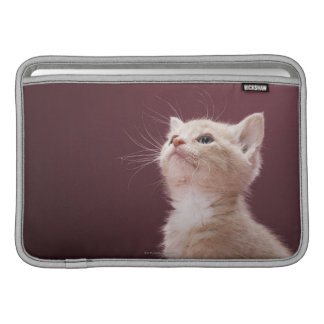 Kitten with Whiskers MacBook Sleeve