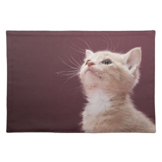 Kitten with Whiskers Placemat