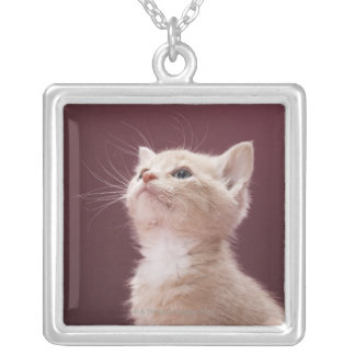 Kitten with Whiskers Silver Plated Necklace