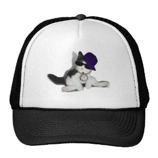 KITTEN.....YO, SUP?! TRUCKER HATS