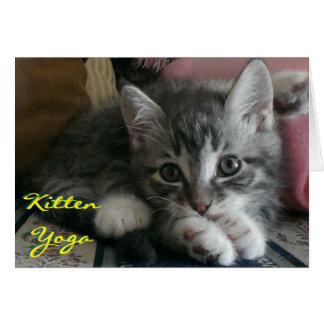 Kitten Yoga (Cheer Card) - Envelope Included Card