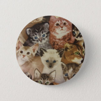 Kittens 6 Cm Round Badge