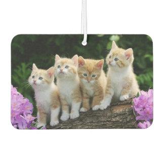 Kittens Air Freshner