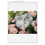 Kittens And Carnations Greeting Card