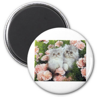 Kittens And Carnations Magnet