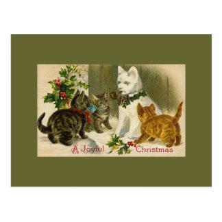Kittens and Snowman Cat Postcard