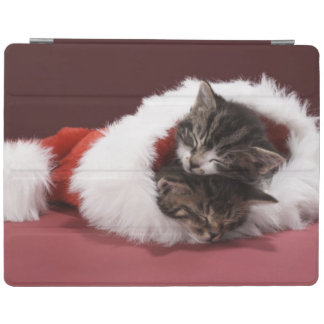 Kittens asleep together in Christmas hat iPad Cover