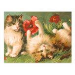 Kittens at Play Postcard