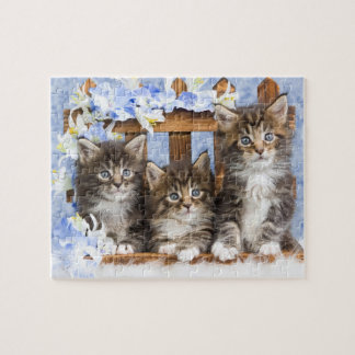Kittens Game Puzzle