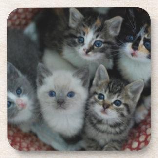 Kittens In A Basket Coaster