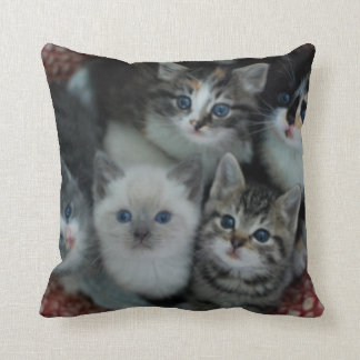 Kittens In A Basket Cushion