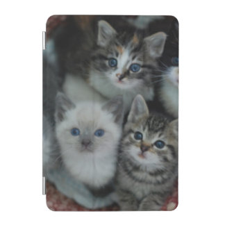 Kittens In A Basket iPad Mini Cover
