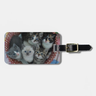 Kittens In A Basket Luggage Tag
