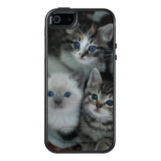 Kittens In A Basket OtterBox iPhone 5/5s/SE Case