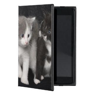 Kittens in a Studio Shot iPad Mini Case