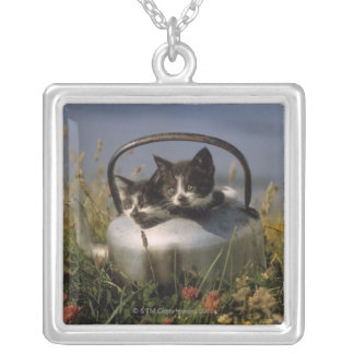 Kittens in an old kettle silver plated necklace
