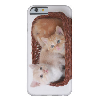 Kittens in basket barely there iPhone 6 case