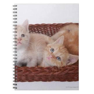 Kittens in basket notebook