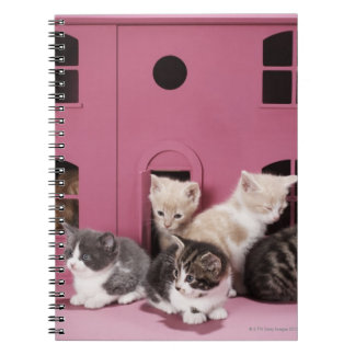 Kittens in doll's house spiral notebook