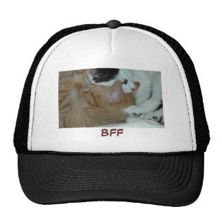 Kittens in Love Cap