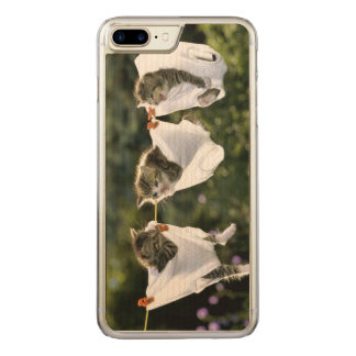 Kittens in underwear on clothesline carved iPhone 8 plus/7 plus case