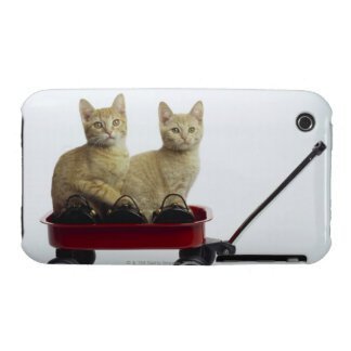 Kittens in wagon iPhone 3 cover