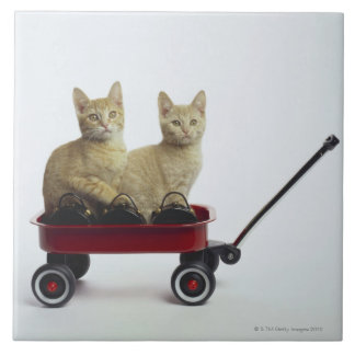 Kittens in wagon tile