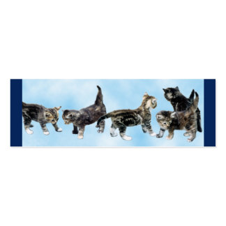 Kittens Mini Bookmark Pack Of Skinny Business Cards